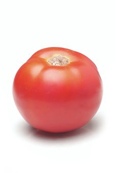 Free Tomato Stock Images - 3196534
