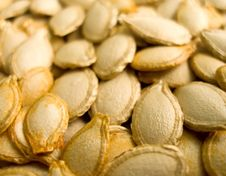Free Pumpkin Seeds Royalty Free Stock Photography - 3196757