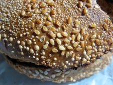 Sesame Bagel Stock Image