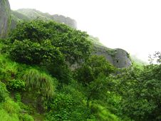 Free A Greenery On Fort Lohgad Royalty Free Stock Photo - 3197605