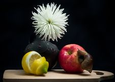 Fruit-piece With Snail Stock Image