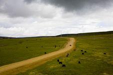 Tibet Landscape Royalty Free Stock Images