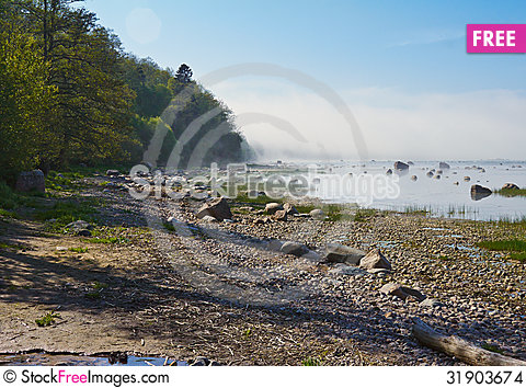 Free Spring At The Seaside Stock Images - 31903674