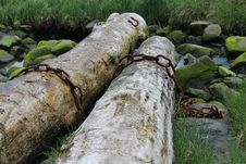 Free Logs With Rusty Chain And Stream In Alaska Royalty Free Stock Photography - 31903527