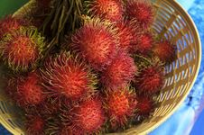 Free Rambutan Or Hairy Fruit Stock Images - 31909264