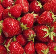 Free Strawberries Royalty Free Stock Photos - 31911058