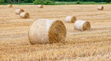 Free Round Bales Of Hay In The Field Stock Photos - 31920843