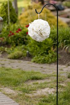 Free White Orb Flower Ball Hanging For A Shepard S Hook Stock Photo - 31923040