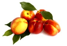 Free Five Nectarines On White Background Stock Image - 31929531
