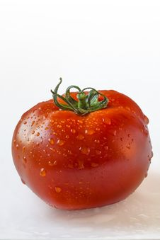 Fresh Ripe Tomato Isolated With Precise Clipping Path