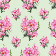 Free Hand-drawn Orchid Seamless Pattern Stock Photography - 31933632