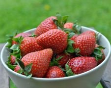 Free Strawberries In A Bowl Royalty Free Stock Photo - 31969185