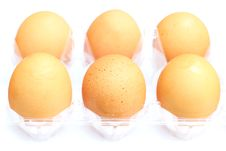 Free Egg Royalty Free Stock Photography - 31976667