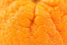 Free Orange Macro As Back Royalty Free Stock Photo - 31978035