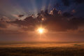 Free Rising Sun Above The Wheat Fields Royalty Free Stock Photo - 31988625