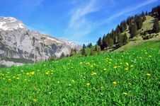 Free Swiss Natural Landscape Stock Photos - 31980483
