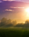 Free Sun Beams In A Foggy Valley Royalty Free Stock Photo - 31995265
