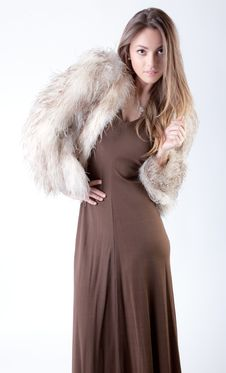Free Fierce In Fur Royalty Free Stock Image - 31990806
