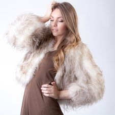 Free Model In Fur Coat Stock Photos - 31990823