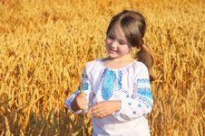 Free Rural Girl On Wheat Field Royalty Free Stock Photography - 31991407