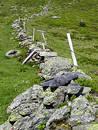Free Stones Fence Royalty Free Stock Image - 325086