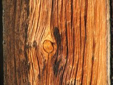Free Knothole Stock Images - 321594