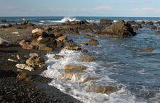Free Seashore Royalty Free Stock Image - 323316