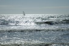Free Windsurfing Royalty Free Stock Photo - 323535
