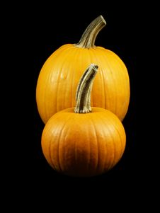 Free Two Pumpkins Royalty Free Stock Photography - 323897