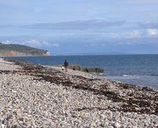 Free Walking On The Beach Stock Photo - 325010