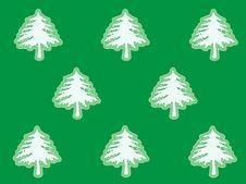 Free White Christmas Trees Royalty Free Stock Image - 325026