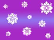 Free White Snow Flakes Royalty Free Stock Photo - 325135
