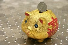 Free Piggy Bank Stock Photos - 328323