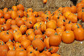 Free Lots Of Pumpkins With Hay Stock Photos - 3206103
