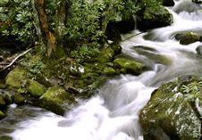 Rushing Mountain Stream Stock Photo
