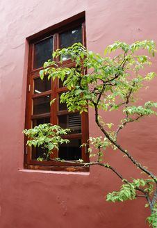 Free Old Window Stock Image - 3200721