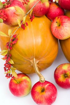 Free Pumpkins And Apples Royalty Free Stock Image - 3200846