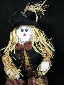 Free Sassy Scarecrow Stock Photo - 3201230