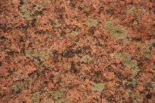 Free Lichen On Rocks 1 Royalty Free Stock Photos - 3201358