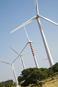 Free Wind Turbines Royalty Free Stock Photography - 3202107