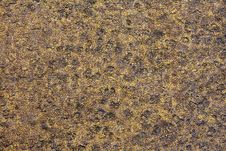 Free Formica Textured Background Royalty Free Stock Photo - 3202225