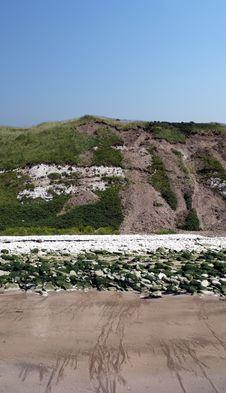 Free Flamborough Cliff Stock Image - 3203291