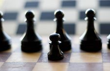 Free Chess Royalty Free Stock Photography - 3204487