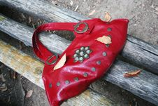 Free Red Leather Bag And Dry Leaf Stock Photo - 3205200