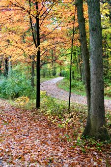 Free Autumn Walk Way Stock Photography - 3205542