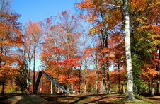 Free Autumn In A Park Royalty Free Stock Images - 3205739