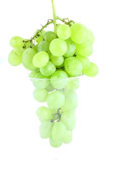 Free Green Grapes Stock Image - 3209031
