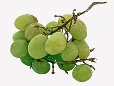 Free Old Grapes Royalty Free Stock Images - 32001259