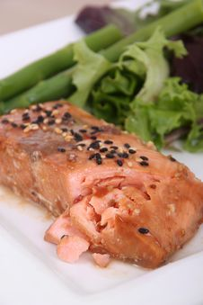 Teriyaki Salmon Stock Photography