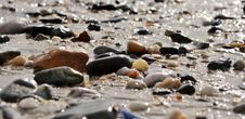 Free Beach Pebbles Royalty Free Stock Image - 32031376